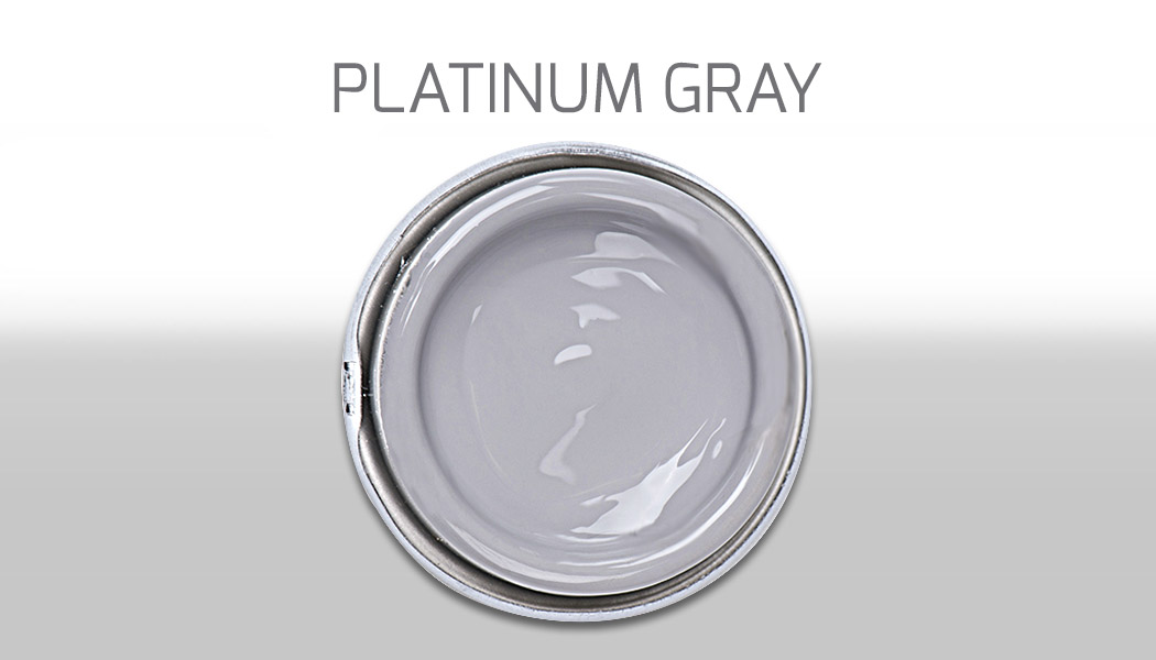 PLATINUM GRAY